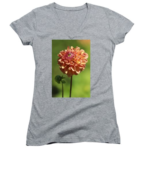 Iced Tea Dahlia In Marzipan And Milano Tones Women's V-Neck (Athletic Fit)