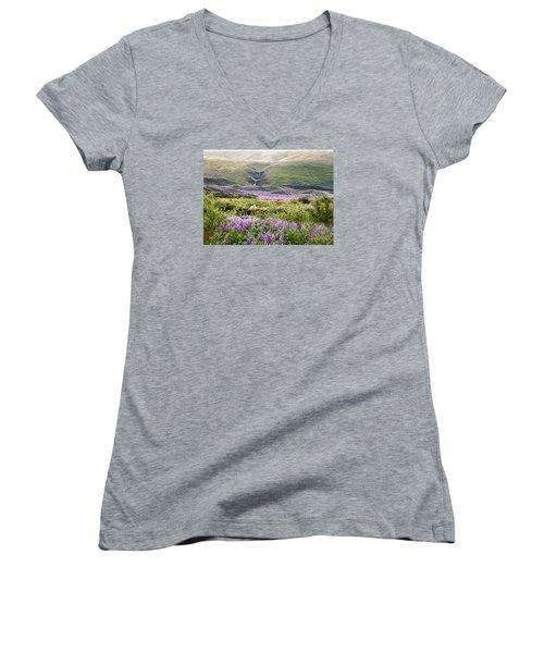Icelandic Treasures Women's V-Neck T-Shirt