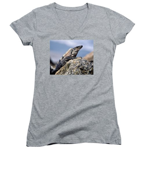 Women's V-Neck T-Shirt (Junior Cut) featuring the photograph Iguana by Sally Weigand