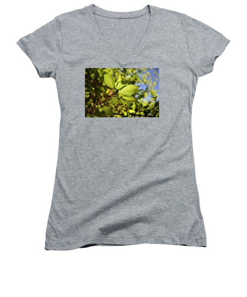 Women's V-Neck featuring the photograph Illuminated Leaves by Ron Cline
