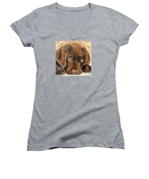 I'm Sorry - Chocolate Lab Puppy Women's V-Neck T-Shirt (Junior Cut) by Julie Brugh Riffey