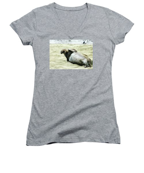 Women's V-Neck T-Shirt (Junior Cut) featuring the photograph Im Too Sexy by Anthony Jones
