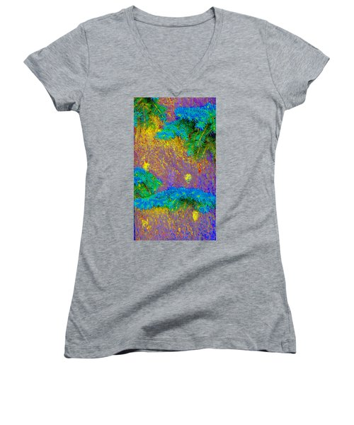 Women's V-Neck T-Shirt (Junior Cut) featuring the photograph Imagining Hawaii by Lenore Senior