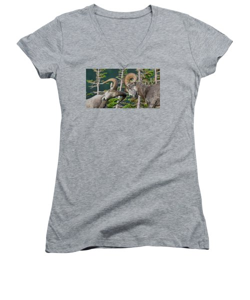 Impact Women's V-Neck T-Shirt (Junior Cut) by Scott Warner