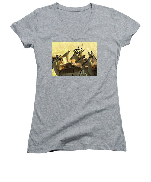 Impalas In The Plains Women's V-Neck