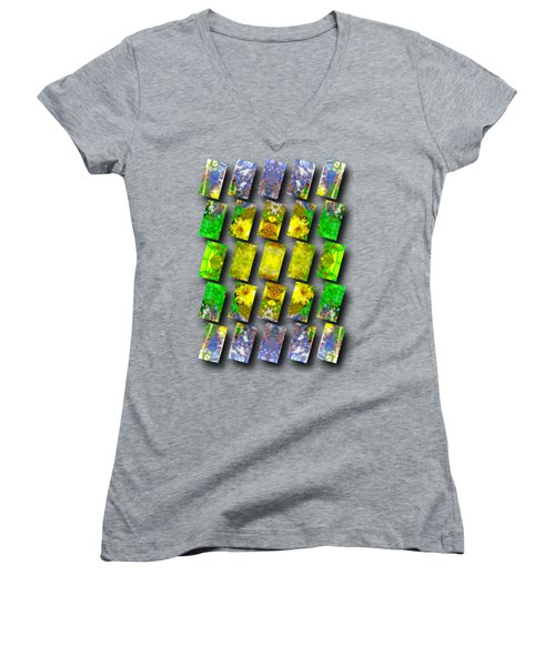 In The Fractured Gardens Women's V-Neck T-Shirt