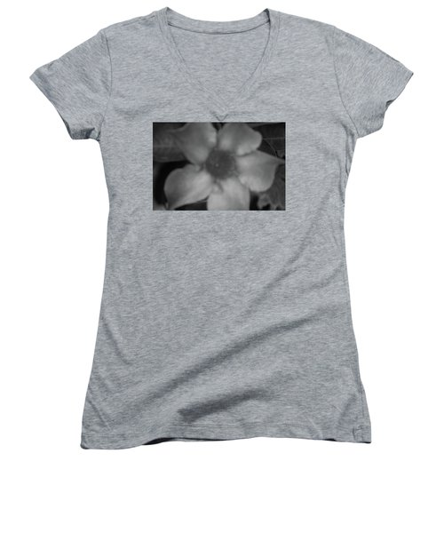 Inside Texture Women's V-Neck T-Shirt