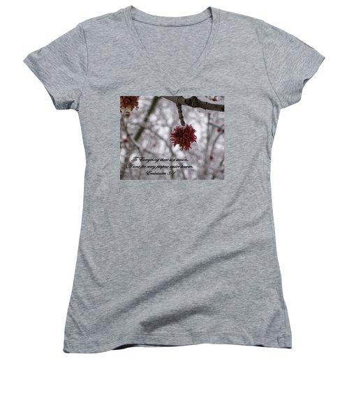 Inspirations 11 Women's V-Neck T-Shirt