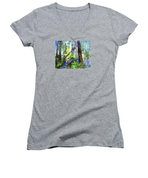 Into The Mist Women's V-Neck T-Shirt