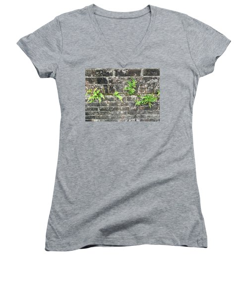 Women's V-Neck T-Shirt (Junior Cut) featuring the photograph Intrepid Ferns by Kim Nelson