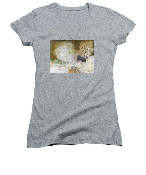 Inv Blend 4 Sisley Women's V-Neck T-Shirt