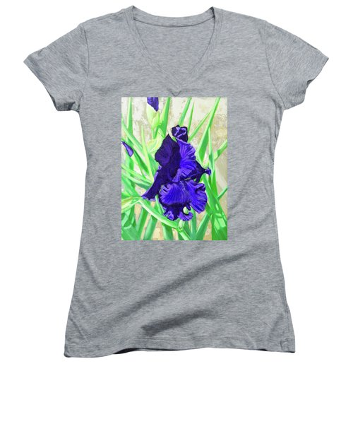 Iris Royalty Women's V-Neck T-Shirt