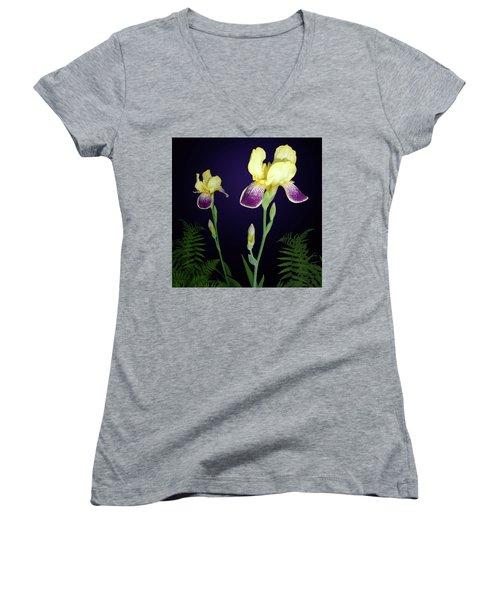 Irises In The Night Garden Women's V-Neck T-Shirt