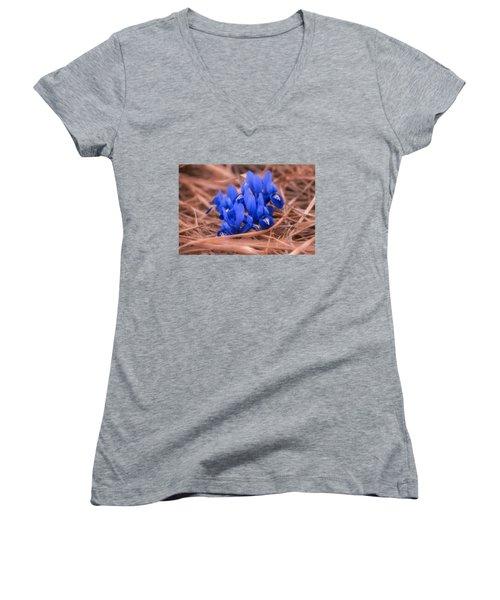 Irises Women's V-Neck T-Shirt (Junior Cut) by Konstantin Sevostyanov