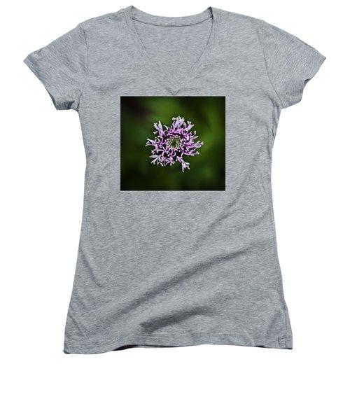 Isolated Flower Women's V-Neck T-Shirt (Junior Cut) by Jason Moynihan