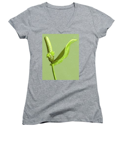 It's A Green Thing Women's V-Neck (Athletic Fit)