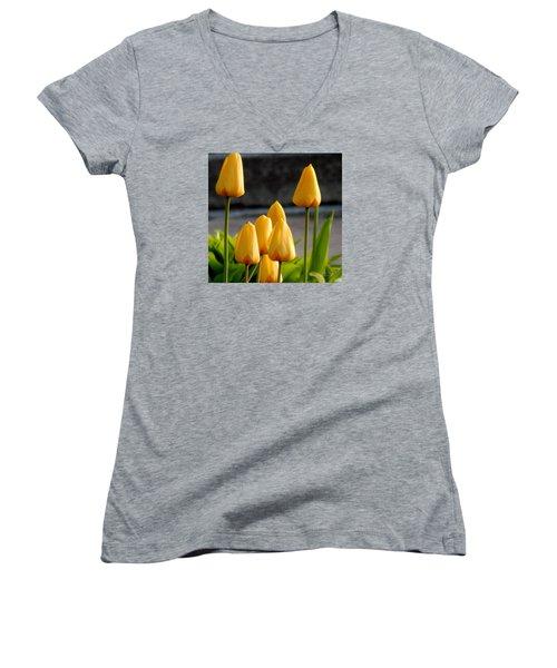 It Is Spring Women's V-Neck