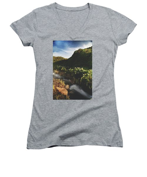Women's V-Neck T-Shirt (Junior Cut) featuring the photograph It Was A Hard Winter by Laurie Search