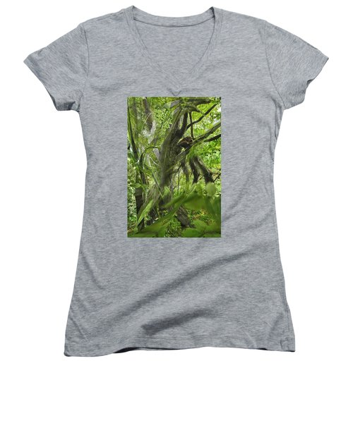 It Was A Windy Day.... Women's V-Neck T-Shirt