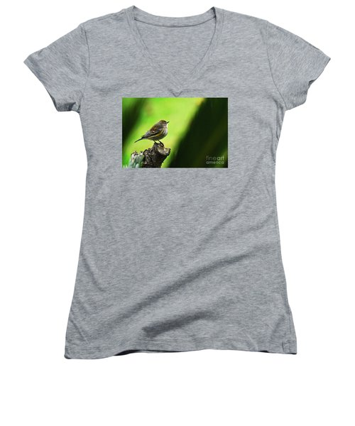 Women's V-Neck T-Shirt (Junior Cut) featuring the photograph January Migration by Debby Pueschel