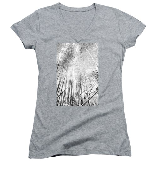 Japan Landscapes Women's V-Neck T-Shirt