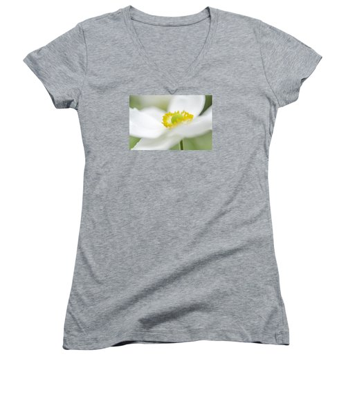 Japanese Anemone Women's V-Neck T-Shirt (Junior Cut) by Mary Angelini
