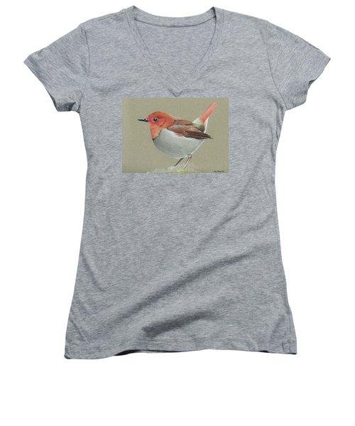 Japanese Robin Women's V-Neck T-Shirt