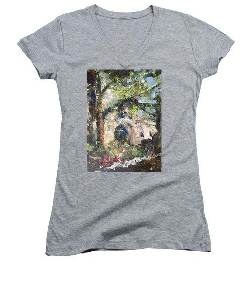 Jardin D'au Paradis  Women's V-Neck T-Shirt (Junior Cut) by Robin Miller-Bookhout