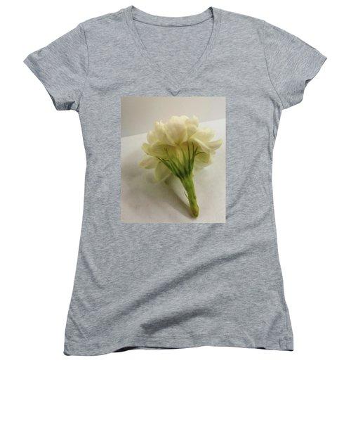 Jasmine Women's V-Neck T-Shirt (Junior Cut) by Bruce Carpenter