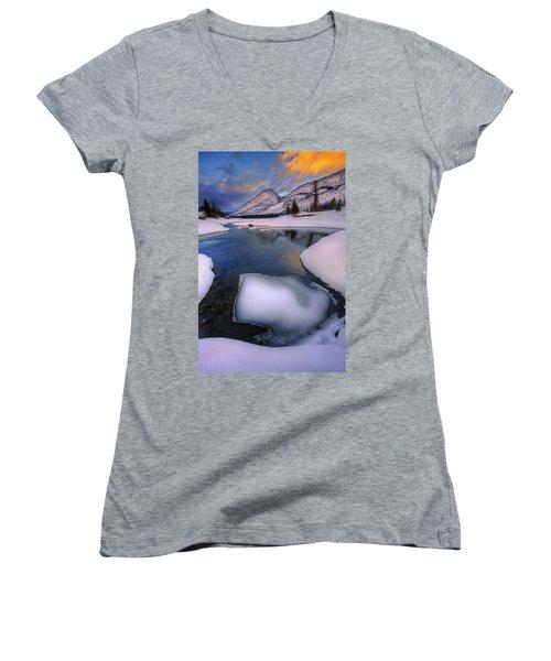 Jasper In The Winter Women's V-Neck T-Shirt