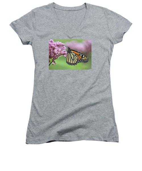 Joe-pye And The Wanderer Women's V-Neck T-Shirt
