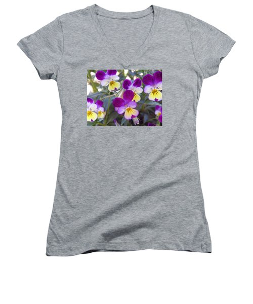 Johnny Jump-ups Women's V-Neck T-Shirt