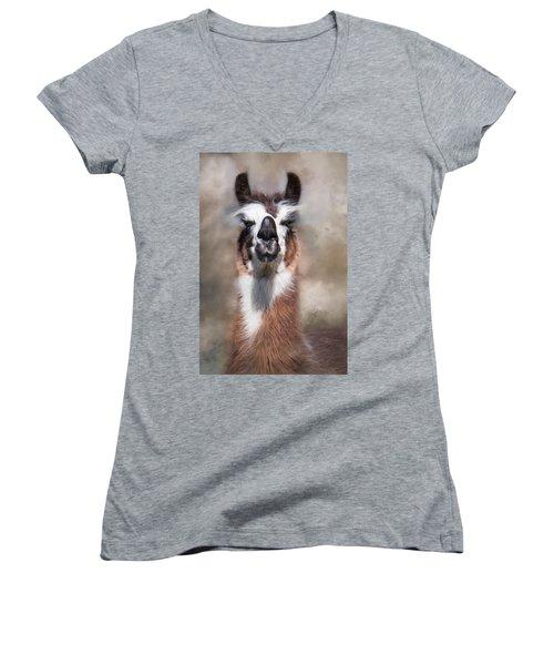 Jolly Llama Women's V-Neck T-Shirt (Junior Cut) by Robin-Lee Vieira