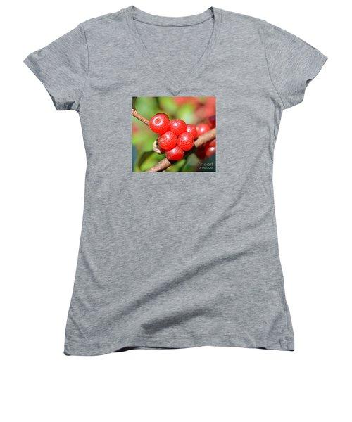 Juicy Red Women's V-Neck T-Shirt (Junior Cut) by Lew Davis
