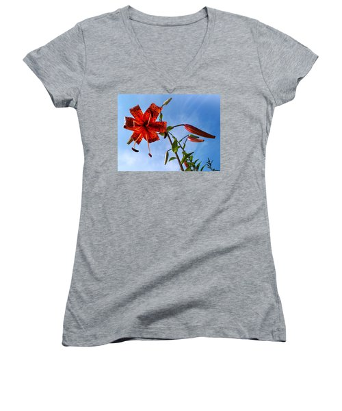 July Women's V-Neck T-Shirt (Junior Cut) by Joy Nichols