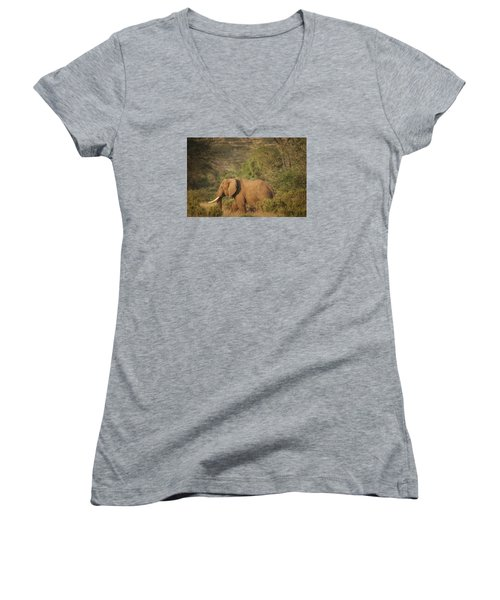 Women's V-Neck T-Shirt (Junior Cut) featuring the photograph Just Passing Through by Gary Hall