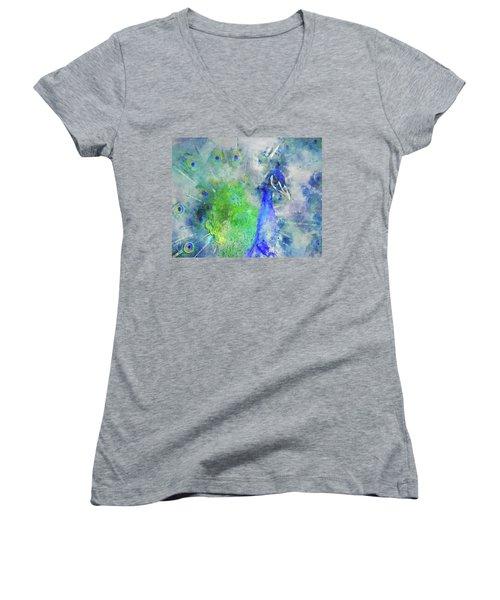 Just Plain Fancy Women's V-Neck T-Shirt