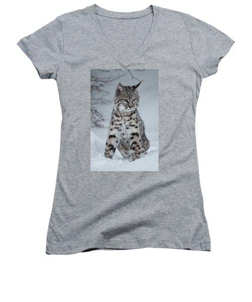 Juvenile Bobcat In The Snow Women's V-Neck