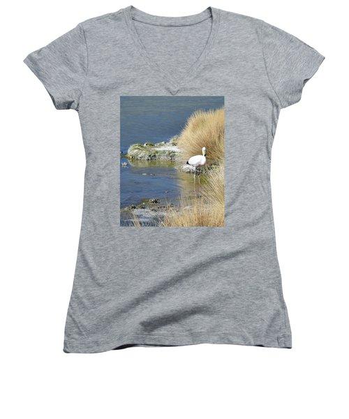 Juvenile Flamingo No. 64 Women's V-Neck T-Shirt (Junior Cut) by Sandy Taylor