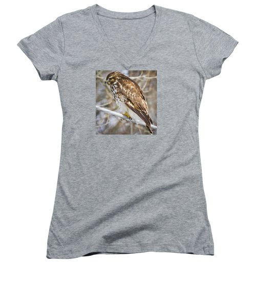 Women's V-Neck T-Shirt (Junior Cut) featuring the photograph Juvenile Red-shouldered Hawk  by Ricky L Jones