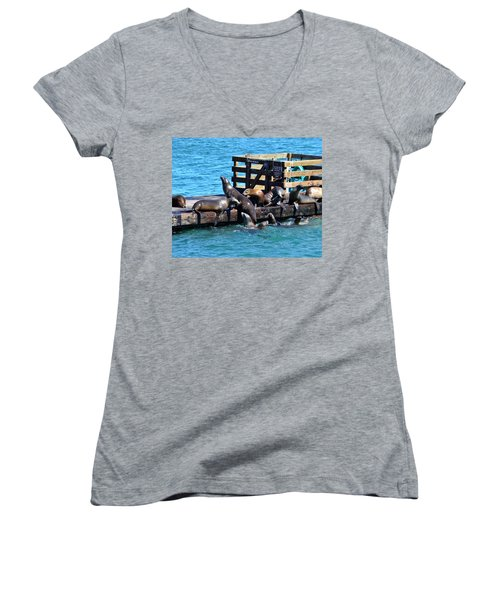 Keep Off The Dock - Sea Lions Can't Read Women's V-Neck (Athletic Fit)