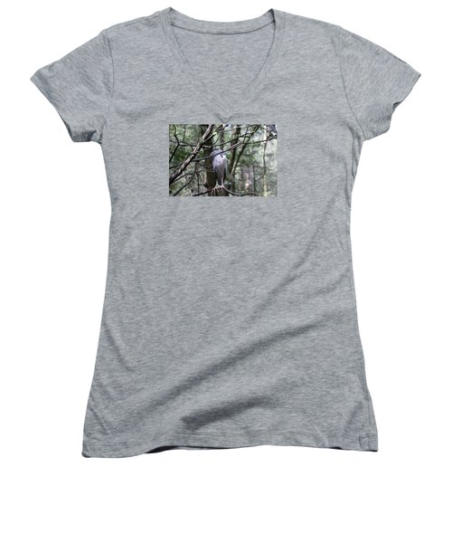 Keeping Eyes Alert Women's V-Neck T-Shirt