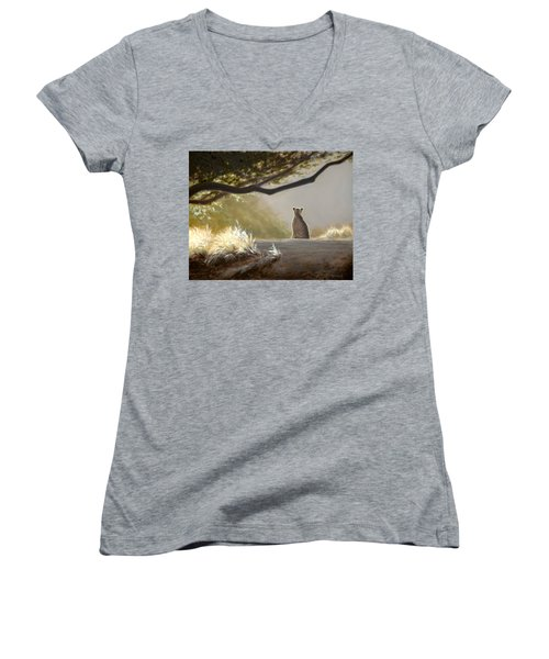 Keeping Watch - Cheetah Women's V-Neck (Athletic Fit)