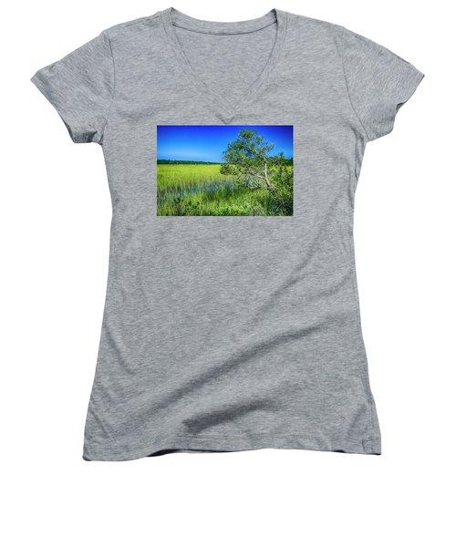 Kent Mitchell Nature Trail, Bald Head Island Women's V-Neck T-Shirt (Junior Cut)