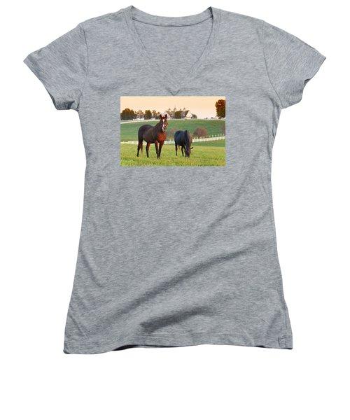 Kentucky Pride Women's V-Neck T-Shirt (Junior Cut) by Alexey Stiop