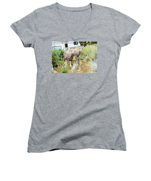 Kid Goats Women's V-Neck T-Shirt