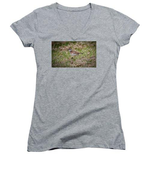 Killdeer Women's V-Neck T-Shirt (Junior Cut) by Ray Congrove