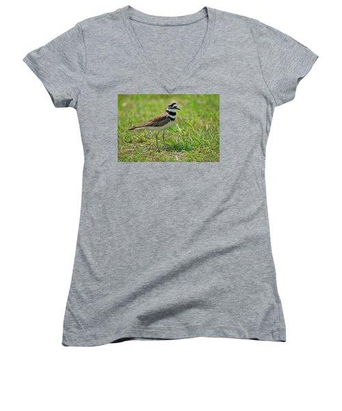 Killdeer Women's V-Neck T-Shirt (Junior Cut) by Rich Leighton