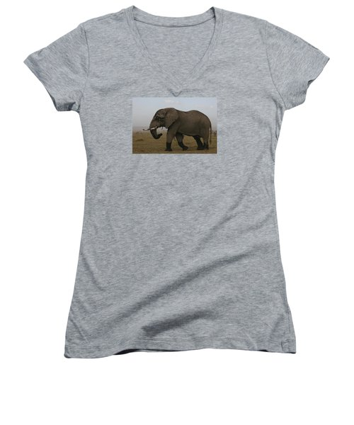 Women's V-Neck T-Shirt (Junior Cut) featuring the photograph King Of The Savannah by Gary Hall
