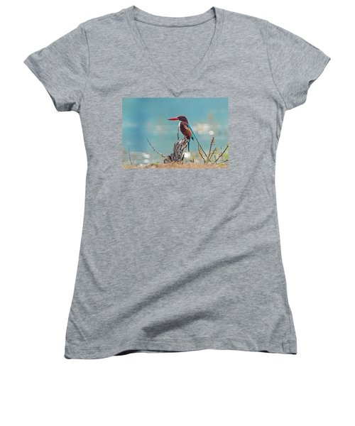 Kingfisher On A Stump Women's V-Neck T-Shirt
